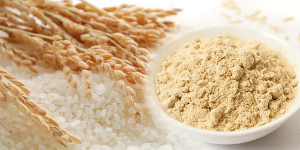 Biologische Rijst Proteïne Poeder