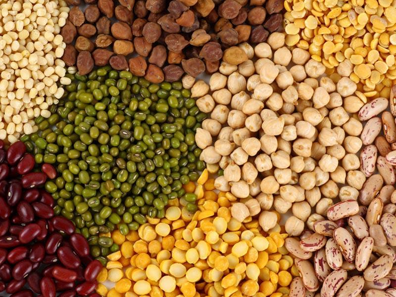biologische bonen en peulvruchten groothandel nutriboost