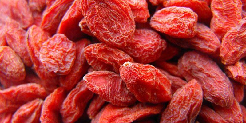 gedroogd fruit groothandel goji bessen