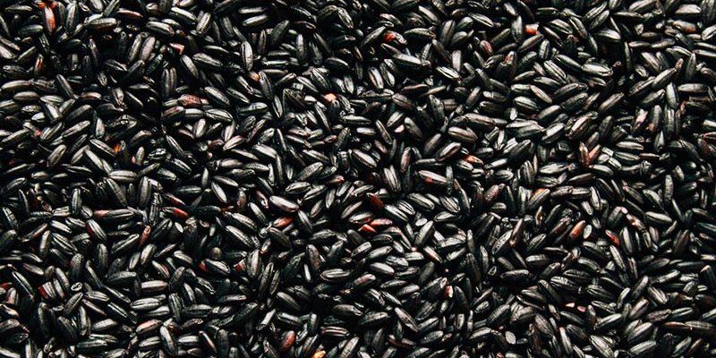 groothandel zwarte rijst