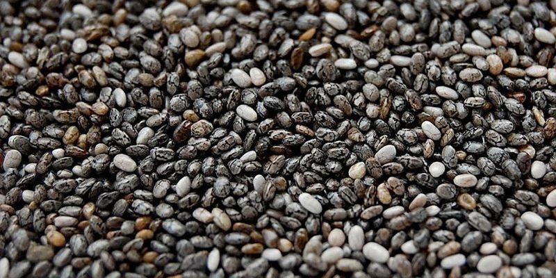 groothandel zaden en granen