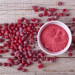 Biologische cranberry poeder